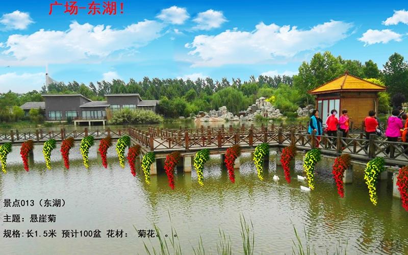 郑州菊花展