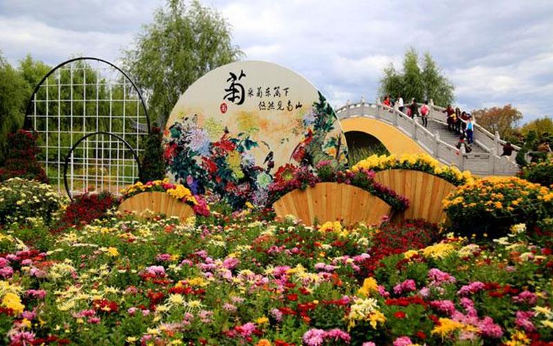 河南公园菊花展设计