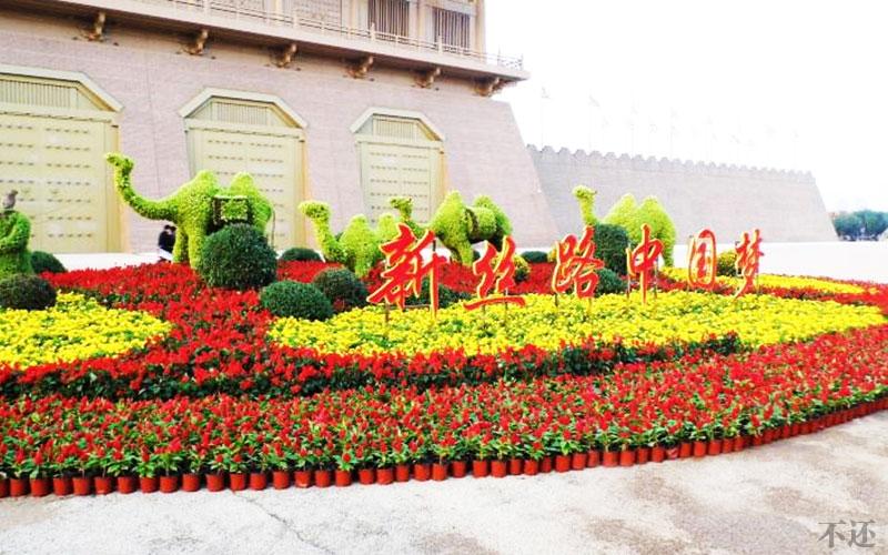 濮阳景区五色草造型