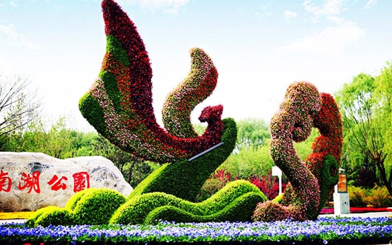 汉中公园五色草造型