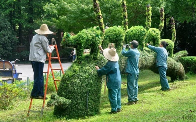 安康公园五色草造型