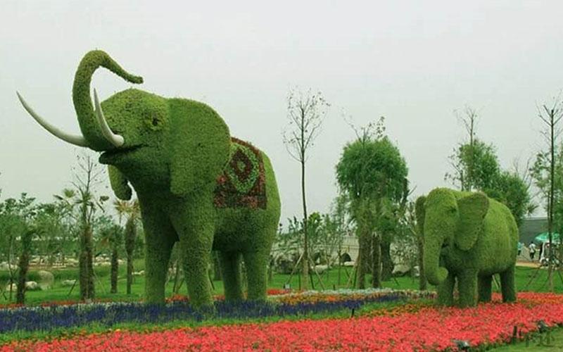 绵阳公园五色草造型