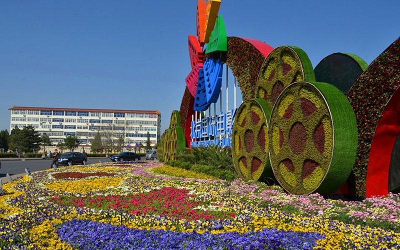 南阳市政五色草造型设计