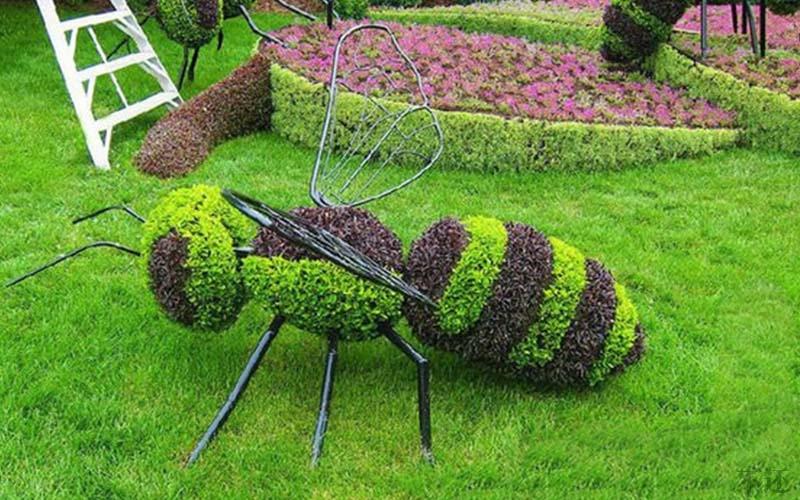 安阳五色草造型设计