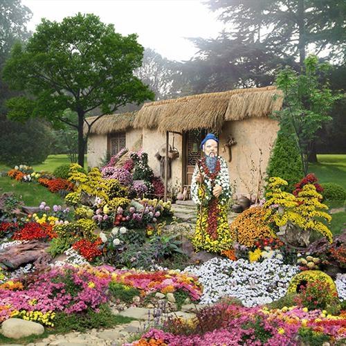 芜湖菊花造型在景区菊花展中的艺术表现
